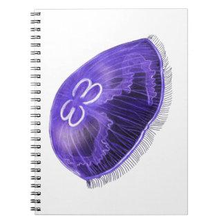 Cuaderno Viaje con tiempo