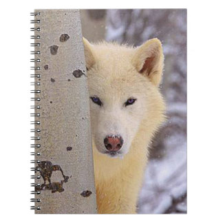Cuaderno White Wolf