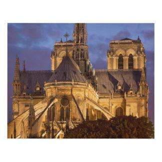 Cuadro Catedral de Notre Dame en la noche