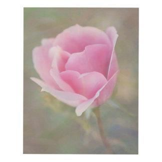 Cuadro Flor color de rosa rosado hermoso con textura