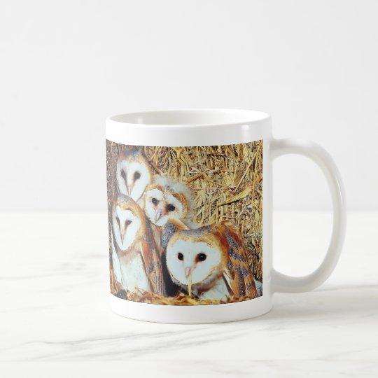 Cuarteto de lechuzas comunes taza de café