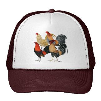 Cuatro gallos de pelea gorro de camionero