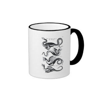 Cuatro tipos de dragón taza de café