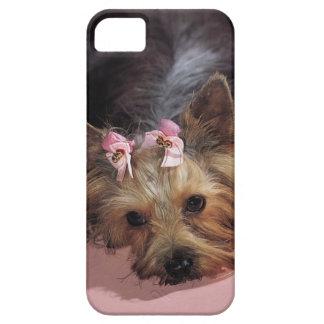 Cubierta adorable del iPhone 5 del perro del KRW Funda Para iPhone SE/5/5s