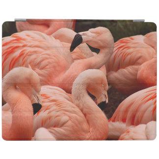 Cubierta De iPad Flamencos rosados