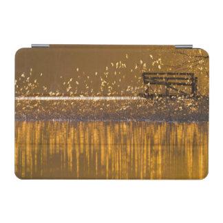 Cubierta De iPad Mini Banco solo por el lago en la luz de oro