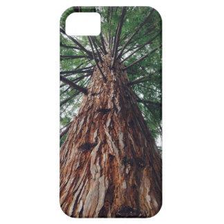 Cubierta del teléfono de la secoya de California Funda Para iPhone SE/5/5s