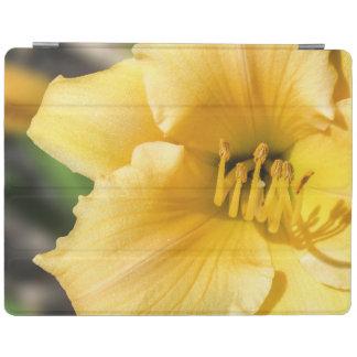 Cubierta elegante del iPad amarillo compensado del