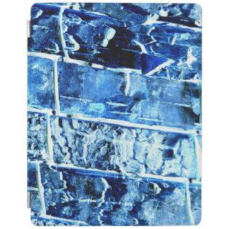 Cubierta elegante del iPad de madera azul del Cubierta De iPad