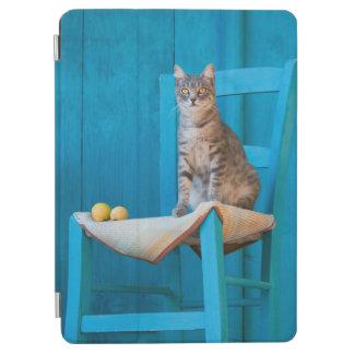 Cubierta Para iPad Air Gatito lindo del gato de Tabby en la foto de