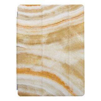 Cubierta Para iPad Pro Favorable cubierta 12,9 del falso del oro del