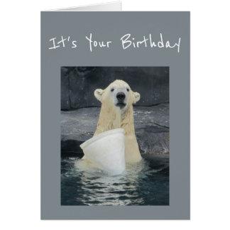 Cubo del oso polar del cumpleaños de humor de la tarjeta de felicitación