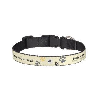 Cuello animal social del mascota collares de perro