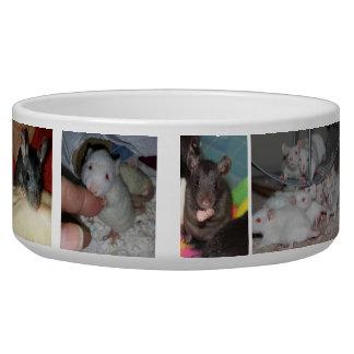 Cuenco grande del mascota de Rattie Comedero Para Mascota