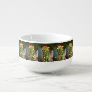Cuenco para sopa espinoso del cactus
