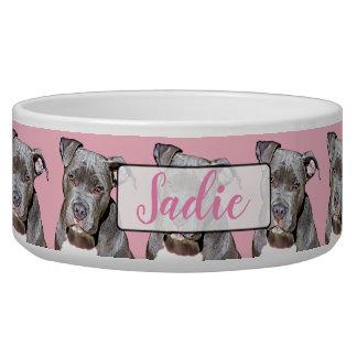 Cuenco rosado conocido personalizado del perro del