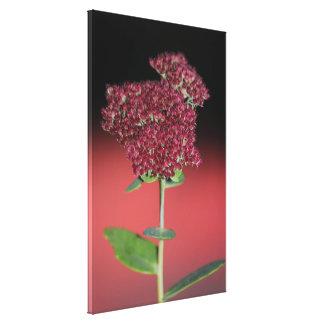 Cuento de hadas floral impresión en lienzo