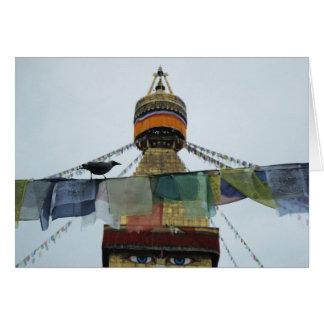 Cuervo de casa en los rezos Bodha Stupa, Nepal Tarjeton