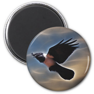 Cuervo del canto en vuelo imán redondo 5 cm