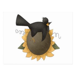 Cuervo en el girasol postales