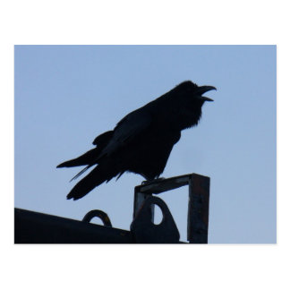 Cuervo en la silueta, isla de Unalaska Postal