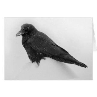 Cuervo en tarjeta de la nieve