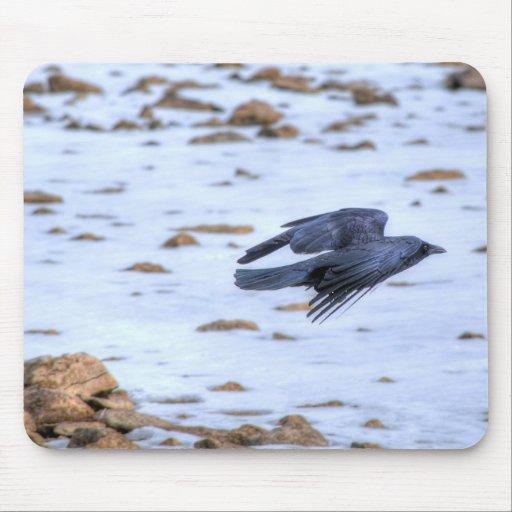 Cuervo negro que vuela gótico, céltico, Wiccan Tapete De Raton