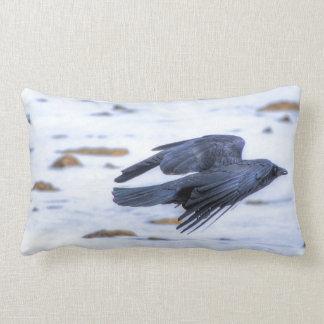 Cuervo negro que vuela gótico céltico Wiccan