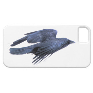 Cuervo negro que vuela gótico, céltico, Wiccan iPhone 5 Cobertura
