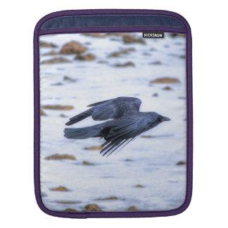 Cuervo negro que vuela gótico, céltico, Wiccan Fundas Para iPads