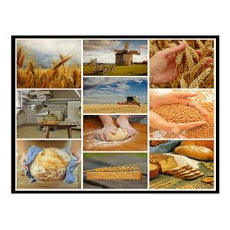 Cueza el collage de la pasta de pasteles del trigo postal