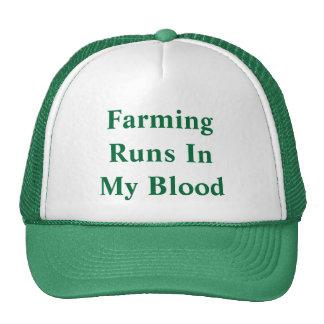 Cultivo de funcionamientos en mi sangre gorra