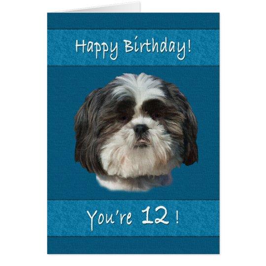 Cumpleaños, 12mo, perro de Shih Tzu Tarjeta De Felicitación