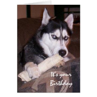 Cumpleaños, algo para usted, humor con el perro tarjeta de felicitación