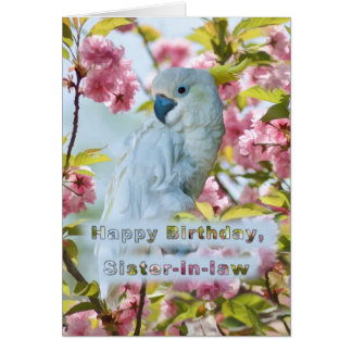 Cumpleaños, cuñada, loro blanco en el cangrejo tarjeta de felicitación