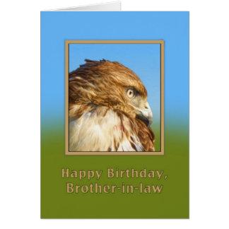 Cumpleaños, cuñado, halcón Áspero-legged Tarjeta De Felicitación