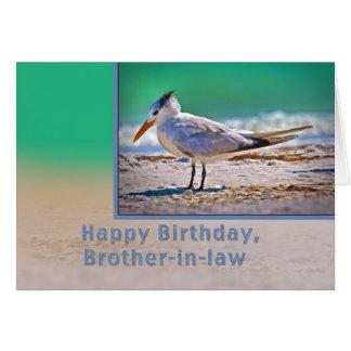 Cumpleaños, cuñado, pájaro real de la golondrina d felicitaciones