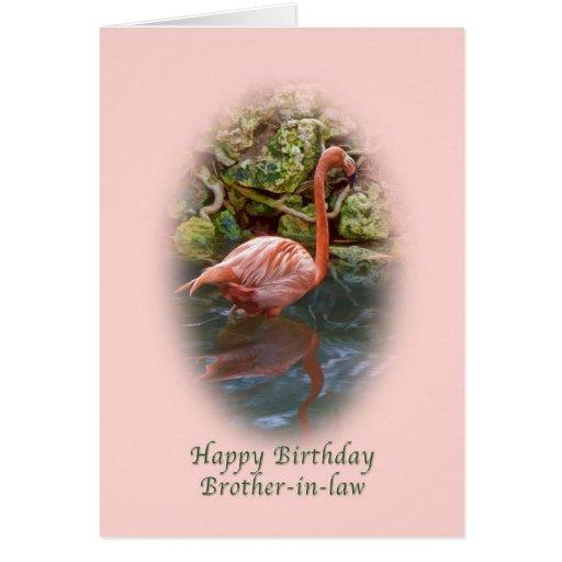 Cumpleaños, cuñado, tarjeta rosada del flamenco
