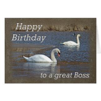 Cumpleaños de Boss - cisnes mudos en la charca del Tarjeta De Felicitación