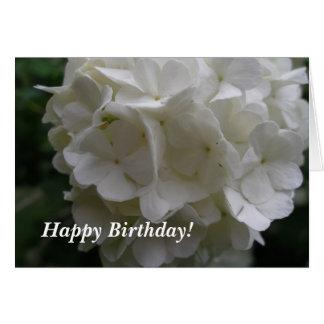 Cumpleaños de Bush de la bola de nieve Tarjeta De Felicitación