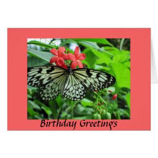Cumpleaños de la mariposa tarjeta de felicitación