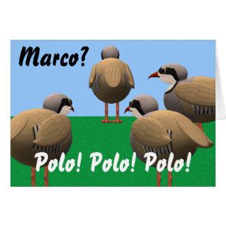 Cumpleaños de Marco Polo Tarjeta