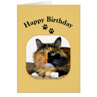 Cumpleaños del gato de calicó feliz tarjeta de felicitación