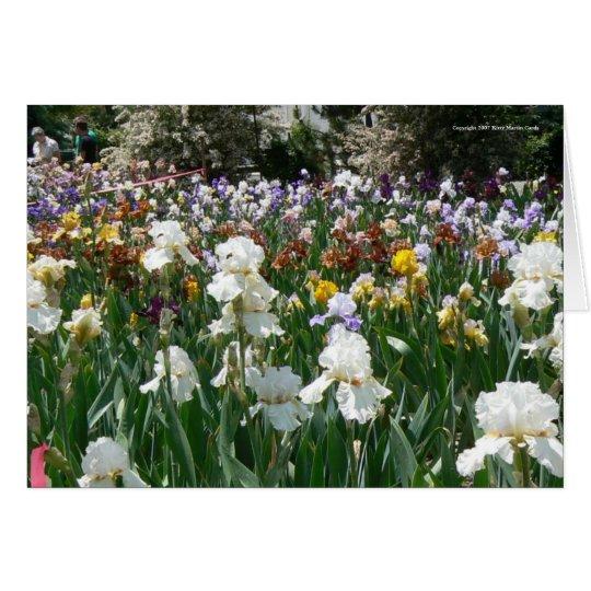 ¡Cumpleaños del jardín del iris feliz! Tarjeta De Felicitación