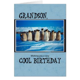 Cumpleaños del nieto, pingüinos tarjeta de felicitación