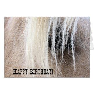 Cumpleaños del ojo del caballo del Palomino Tarjeta De Felicitación
