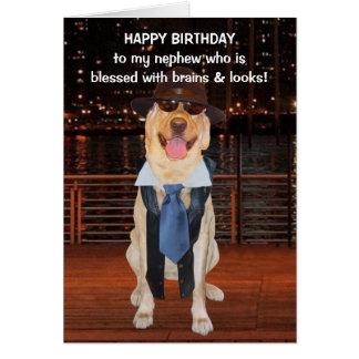 Cumpleaños divertido del perro/del laboratorio tarjeta de felicitación