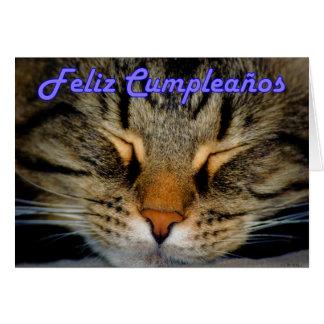 Cumpleaños español de Feliz Cumpleaños con el gato Tarjeta De Felicitación