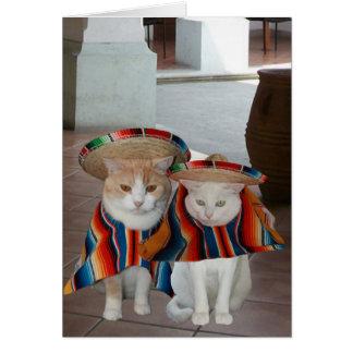 Cumpleaños español del gato divertido para el mari felicitación