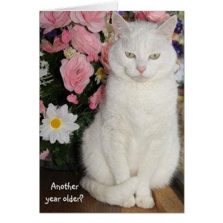 Cumpleaños femenino del gato bonito adaptable tarjeta de felicitación